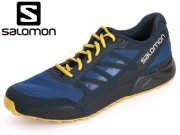 Salomon City Cross L37325200 gentiane