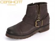 CA SHOTT 14132-12 brown