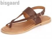 Bisgaard 71911.116-61 castania