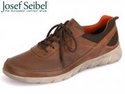 Seibel Cliff 09 50309 TE768 311 brasil kombi