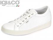 Igi&Co 77911-00 DAT 77911 bianco