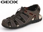 Geox Sandal U6224B-00050-C6024 dark coffee Vitello Synthetik