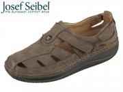 Seibel Greyson 44452 81 330 moro