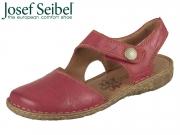 Seibel Rosalie 27 79527 95 450 hibiscus