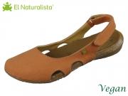 El Naturalista Wakataua N415T carrot carrot canvas seaweed