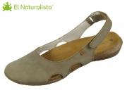 El Naturalista Wakataua N413 kaki kaki Pleasant