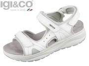 Igi&Co DEZ 31684 bianco