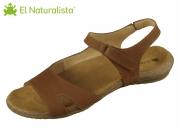 El Naturalista Wakataua N5066 wood wood Pleasant