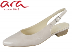 ARA Paris 12-33012-08 shell Vernice