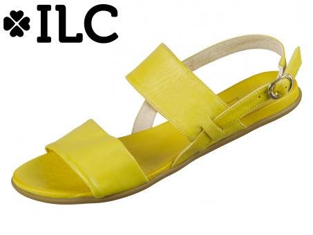 ILC Kira C41-3510-12 yellow
