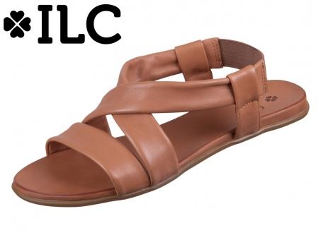ILC C41-3500-03 cognac Leder